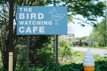 空前の喫茶ブーム到来【The Bird Watching Cafe】