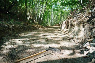 森林整備ボランティア【share the trail vol.5】
